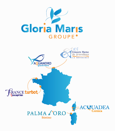 GMG-carte-logo-societe-2